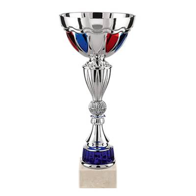 Coupe argent BBR 33cm