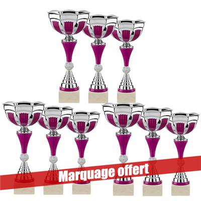 Lot de 9 coupes